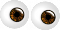 twee ogen bruin gespiegeld aan blauw